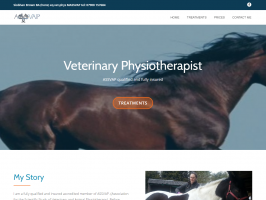 FireShot Screen Capture #004 - 'Horse Physiotherapy – Siobhan Brown' - www_equinephysiotherapy_ne